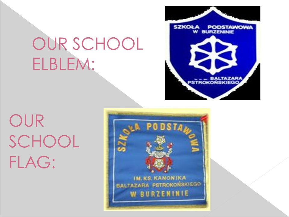 OUR SCHOOL ELBLEM: OUR SCHOOL FLAG: