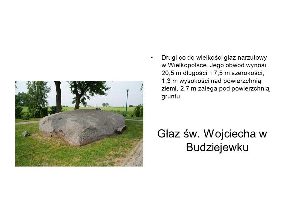 Drugi co do wielkości głaz narzutowy w Wielkopolsce. Jego obwód wynosi 20,5 m długości i 7,5 m szerokości, 1,3 m wysokości nad powierzchnią ziemi, 2,7