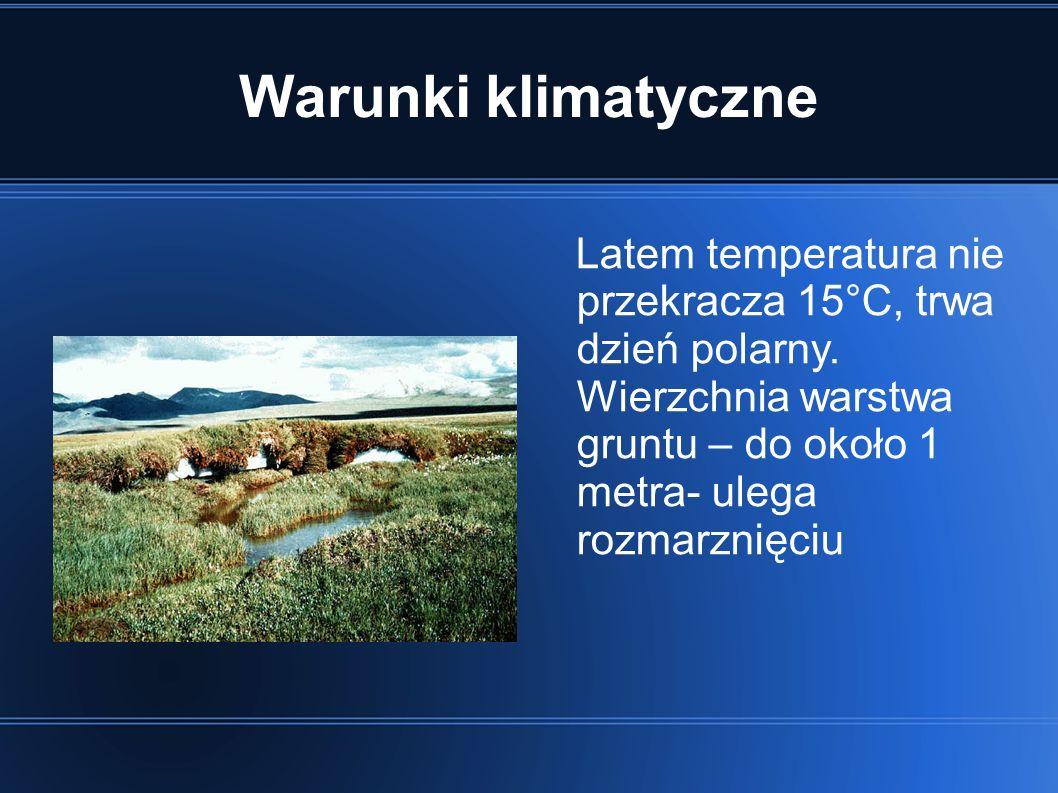Warunki klimatyczne Latem temperatura nie przekracza 15°C, trwa dzień polarny. Wierzchnia warstwa gruntu – do około 1 metra- ulega rozmarznięciu
