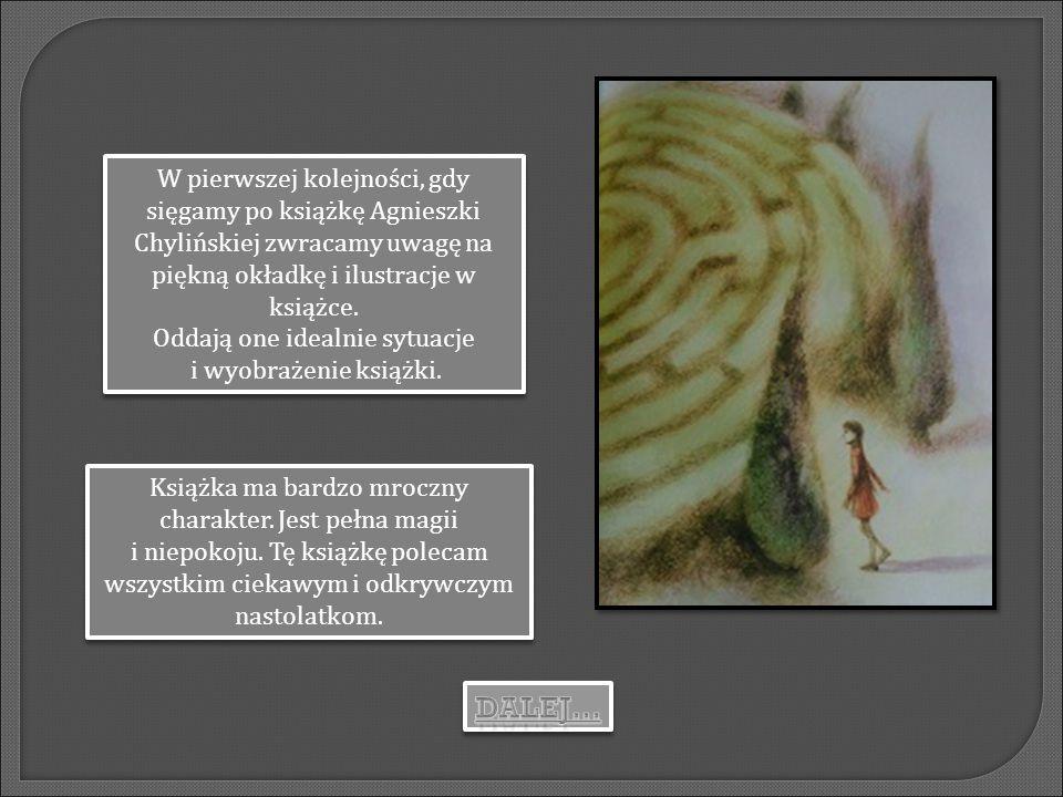 W pierwszej kolejności, gdy sięgamy po książkę Agnieszki Chylińskiej zwracamy uwagę na piękną okładkę i ilustracje w książce. Oddają one idealnie sytu