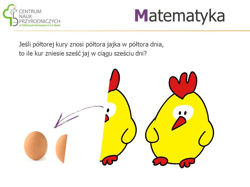 Jeśli półtorej kury znosi półtora jajka w półtora dnia, to ile kur zniesie sześć jaj w ciągu sześciu dni? Matematyka