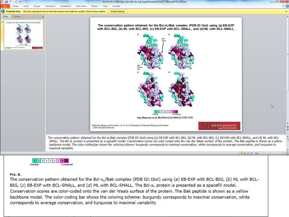 Grafiki można powiększać i pobierać w formie slajdów (PowerPoint).