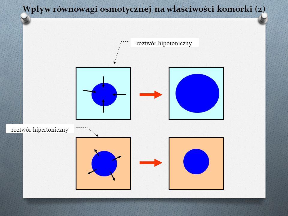 Wpływ równowagi osmotycznej na właściwości komórki (2) roztwór hipotoniczny roztwór hipertoniczny