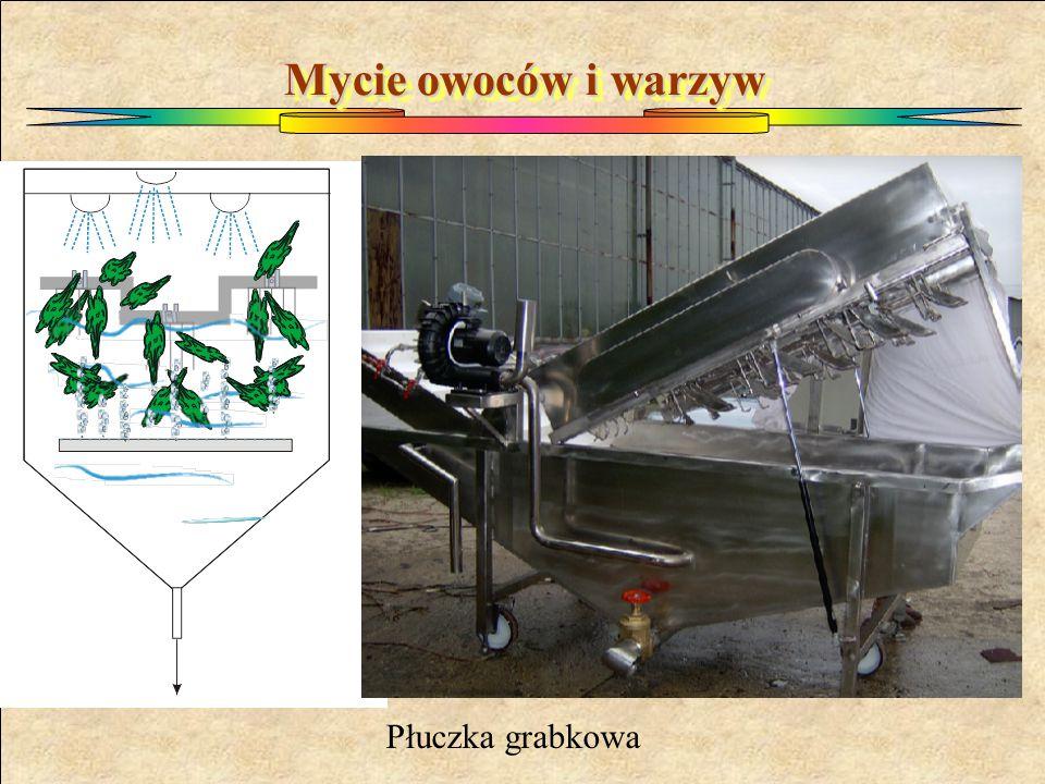 Mycie owoców i warzyw Płuczka grabkowa