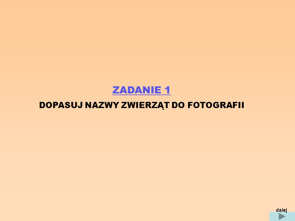 ZADANIE 1 DOPASUJ NAZWY ZWIERZĄT DO FOTOGRAFII dalej