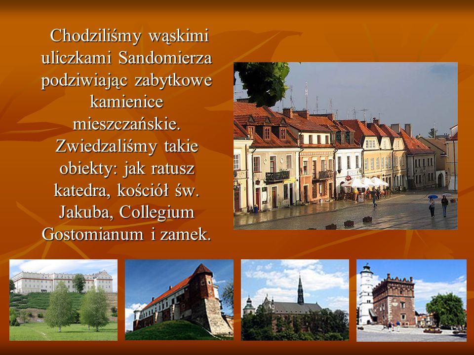 Chodziliśmy wąskimi uliczkami Sandomierza podziwiając zabytkowe kamienice mieszczańskie. Zwiedzaliśmy takie obiekty: jak ratusz katedra, kościół św. J