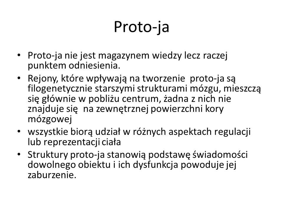Proto-ja Proto-ja nie jest magazynem wiedzy lecz raczej punktem odniesienia.