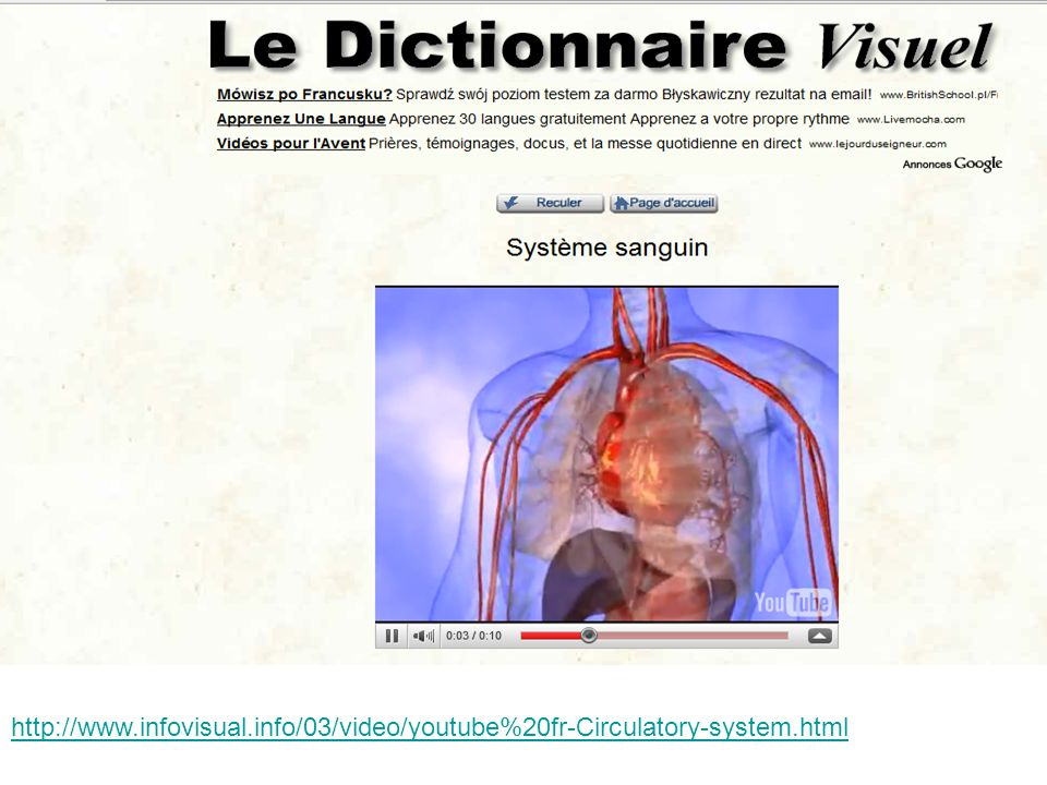 http://www.infovisual.info/03/video/youtube%20fr-Circulatory-system.html