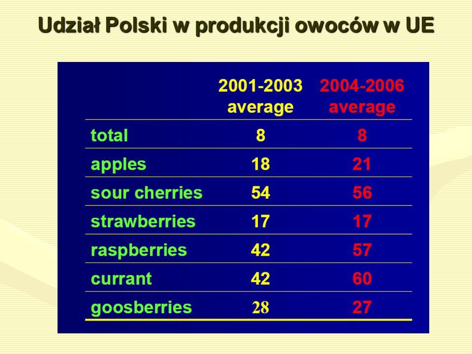 Udział Polski w produkcji owoców w UE