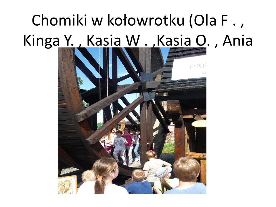 Chomiki w kołowrotku (Ola F., Kinga Y., Kasia W.,Kasia O., Ania O., inne).