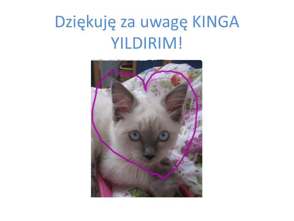 Dziękuję za uwagę KINGA YILDIRIM!