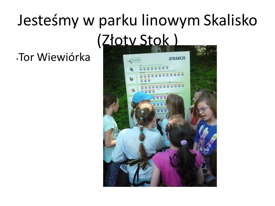 Jesteśmy w parku linowym Skalisko (Złoty Stok ) Tor Wiewiórka