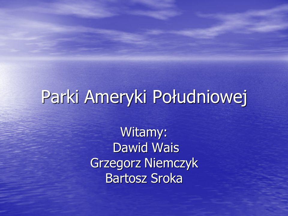 Parki Ameryki Południowej Witamy: Dawid Wais Grzegorz Niemczyk Bartosz Sroka