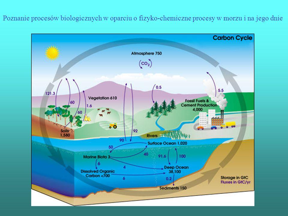 Poznanie procesów biologicznych w oparciu o fizyko-chemiczne procesy w morzu i na jego dnie