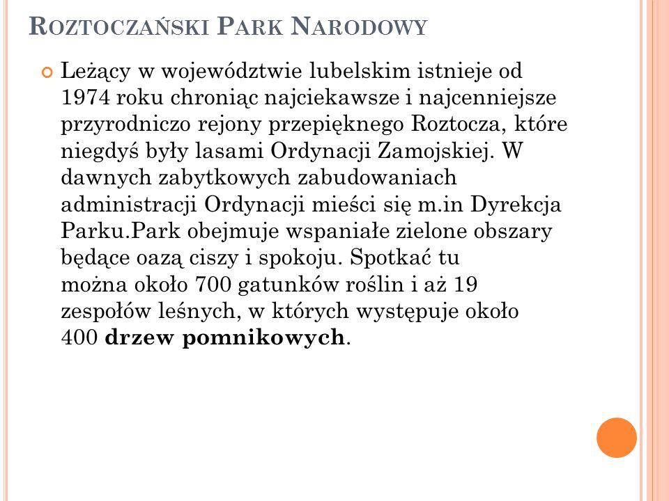 R OZTOCZAŃSKI P ARK N ARODOWY Leżący w województwie lubelskim istnieje od 1974 roku chroniąc najciekawsze i najcenniejsze przyrodniczo rejony przepięk