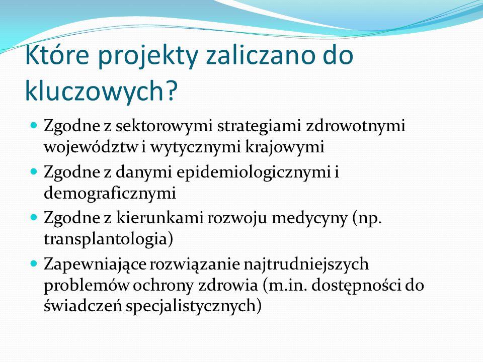 Które projekty zaliczano do kluczowych.