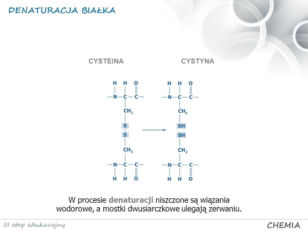 W procesie denaturacji niszczone są wiązania wodorowe, a mostki dwusiarczkowe ulegają zerwaniu. CYSTEINACYSTYNA
