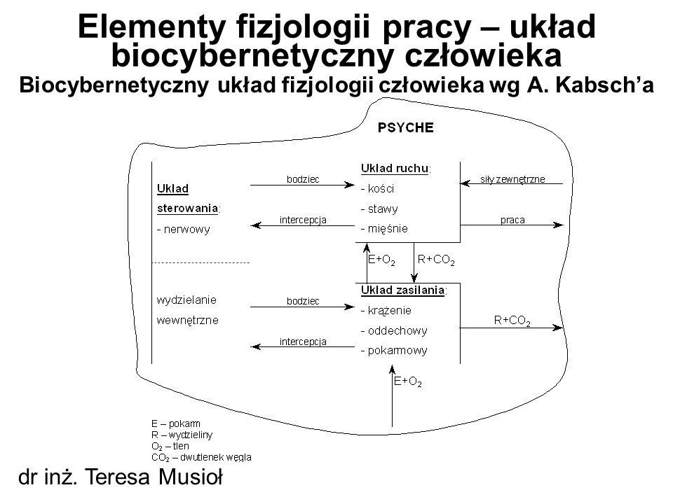Biocybernetyczny układ fizjologii człowieka wg A. Kabsch'a Elementy fizjologii pracy – układ biocybernetyczny człowieka dr inż. Teresa Musioł