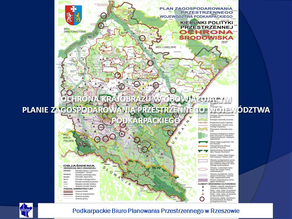 Ustalenia dotyczące ochrony krajobrazu w obowiązującym planie w dużej miały charakter intuicyjny i nie były poparte studiami i programami dla świeżo utworzonego województwa podkarpackiego.