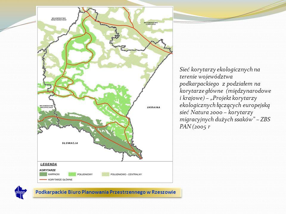 Sieć korytarzy ekologicznych na terenie województwa podkarpackiego z podziałem na korytarze główne (międzynarodowe i krajowe) – Projekt korytarzy ekol