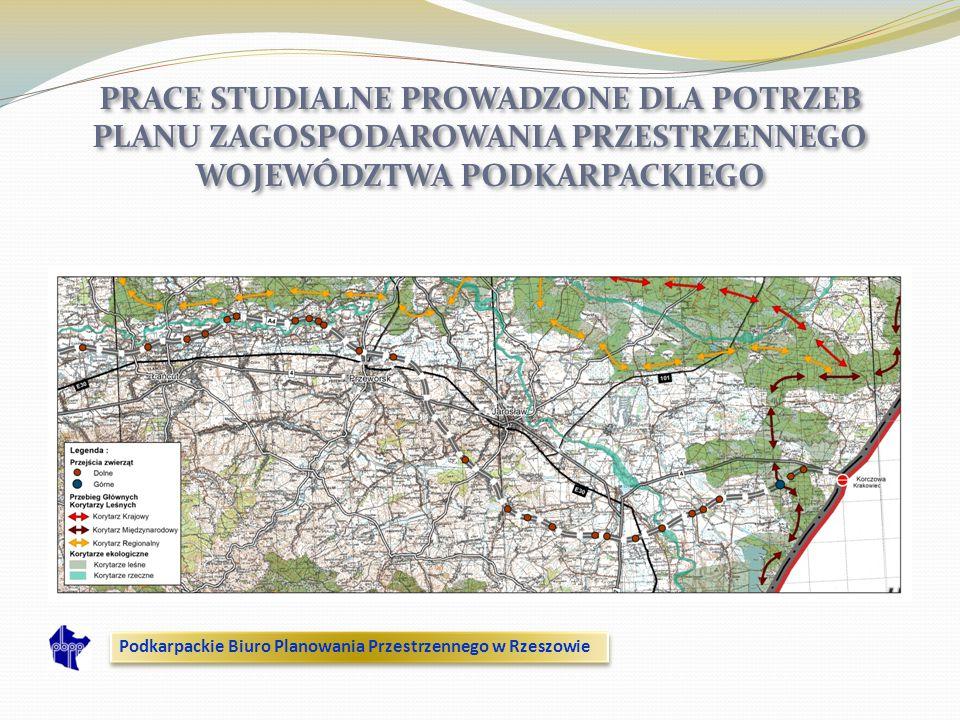 PRACE STUDIALNE PROWADZONE DLA POTRZEB PLANU ZAGOSPODAROWANIA PRZESTRZENNEGO WOJEWÓDZTWA PODKARPACKIEGO Podkarpackie Biuro Planowania Przestrzennego w