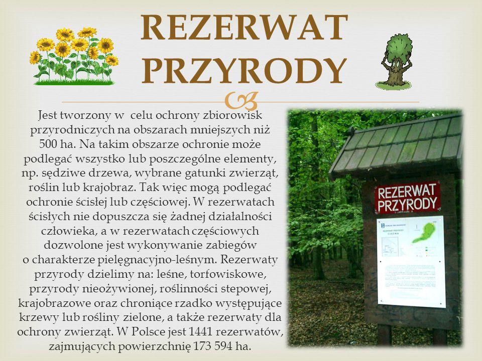 Rezerwat Przyrody Pomnik Przyrody FORMY