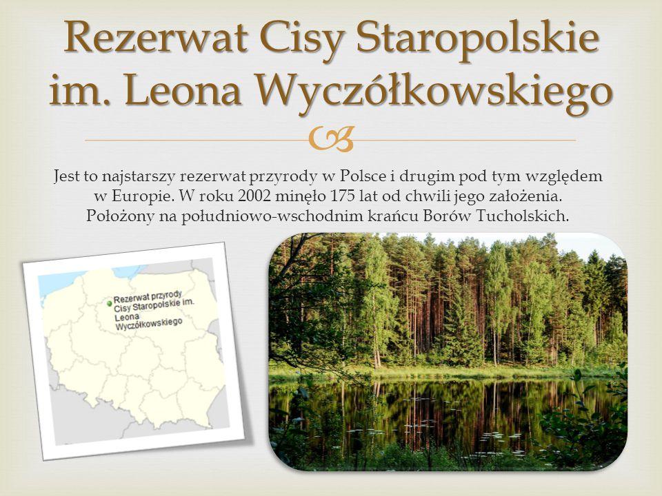Jest tworzony w celu ochrony zbiorowisk przyrodniczych na obszarach mniejszych niż 500 ha. Na takim obszarze ochronie może podlegać wszystko lub poszc