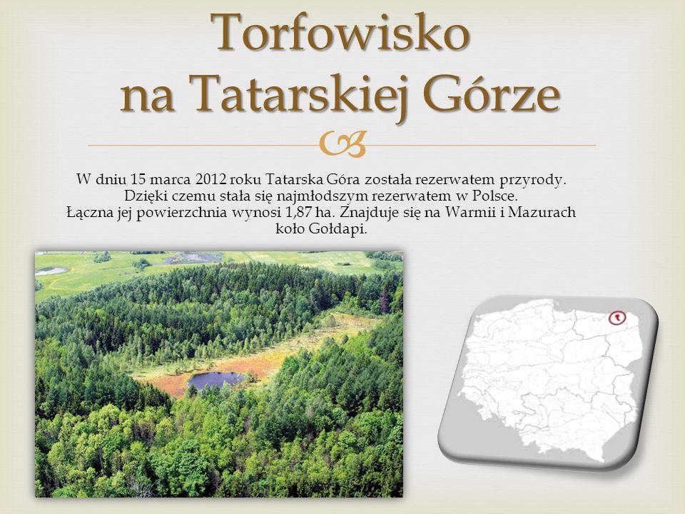Jest to najstarszy rezerwat przyrody w Polsce i drugim pod tym względem w Europie. W roku 2002 minęło 175 lat od chwili jego założenia. Położony na po