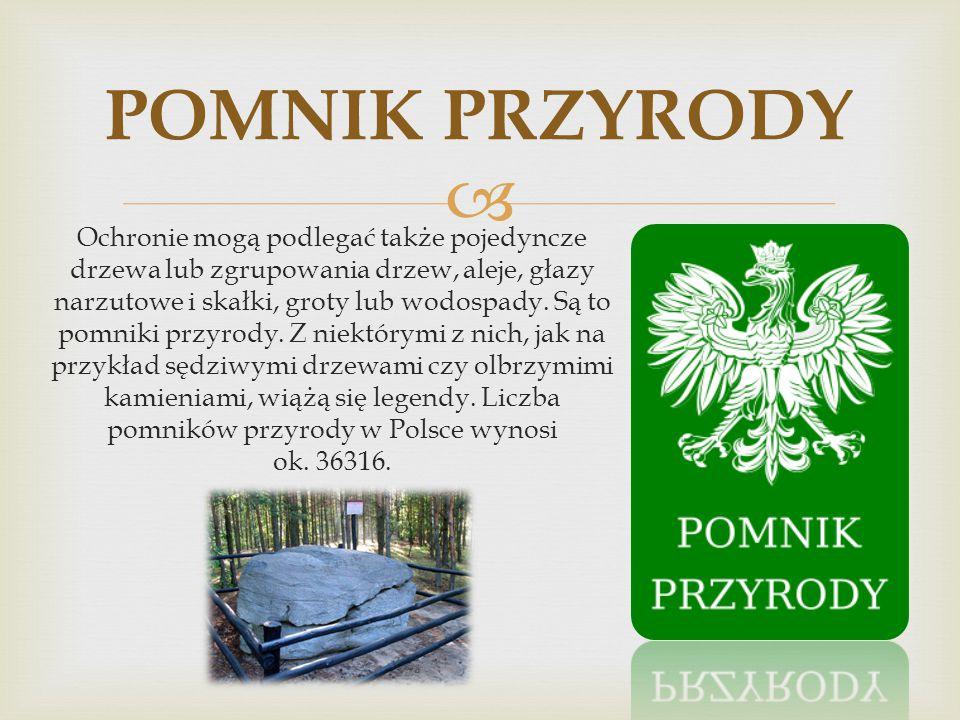 W dniu 15 marca 2012 roku Tatarska Góra została rezerwatem przyrody. Dzięki czemu stała się najmłodszym rezerwatem w Polsce. Łączna jej powierzchnia w