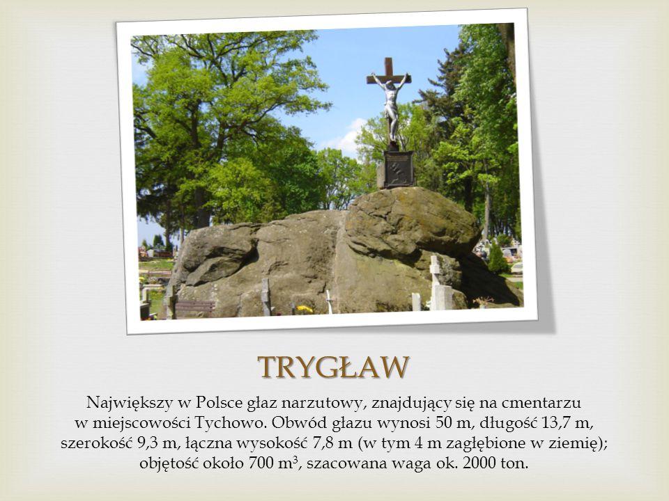 DĄB BARTEK Jeden z najstarszych w Polsce dębów, od 1954 r. chroniony jako pomnik przyrody, rosnący przy drodze we wsi Bartków, w województwie świętokr