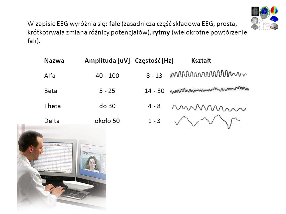 W zapisie EEG wyróżnia się: fale (zasadnicza część składowa EEG, prosta, krótkotrwała zmiana różnicy potencjałów), rytmy (wielokrotne powtórzenie fali
