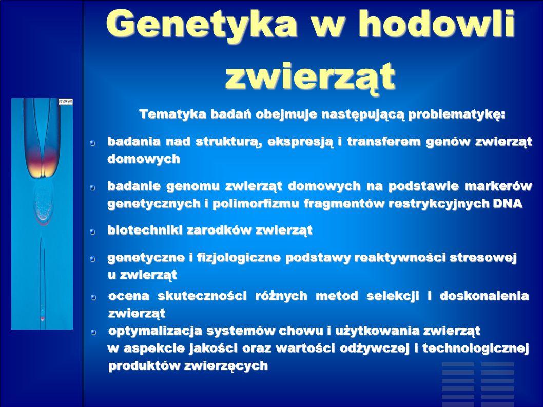 Genetyka w hodowli zwierząt Tematyka badań obejmuje następującą problematykę: Tematyka badań obejmuje następującą problematykę: badania nad strukturą,