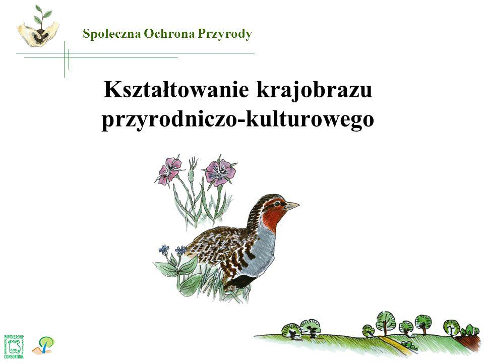 Kształtowanie krajobrazu przyrodniczo-kulturowego Społeczna Ochrona Przyrody