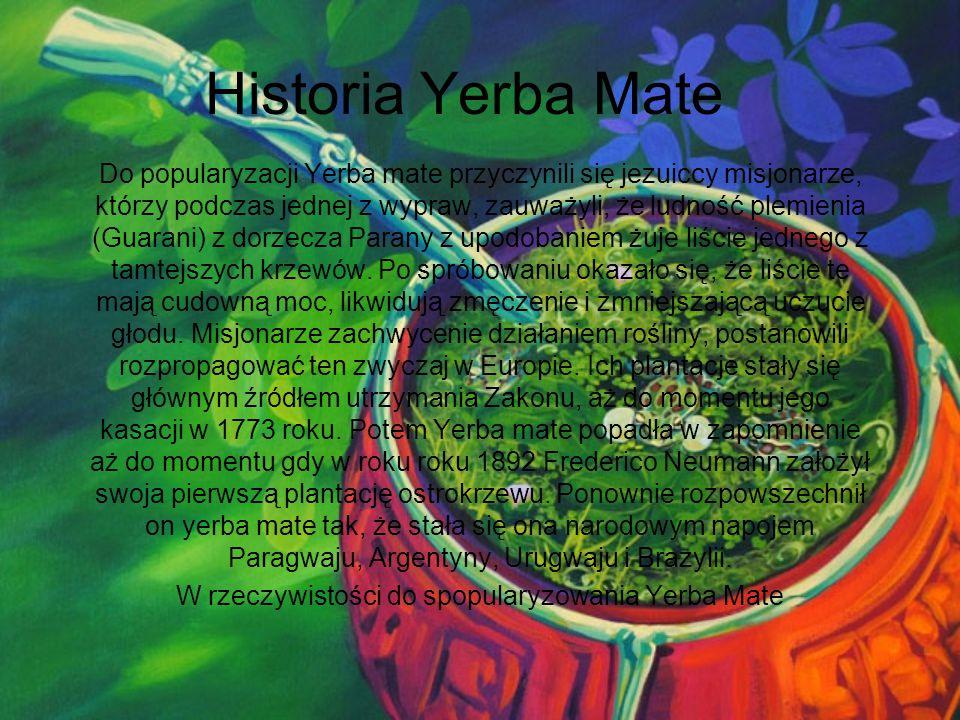 Historia Yerba Mate Do popularyzacji Yerba mate przyczynili się jezuiccy misjonarze, którzy podczas jednej z wypraw, zauważyli, że ludność plemienia (