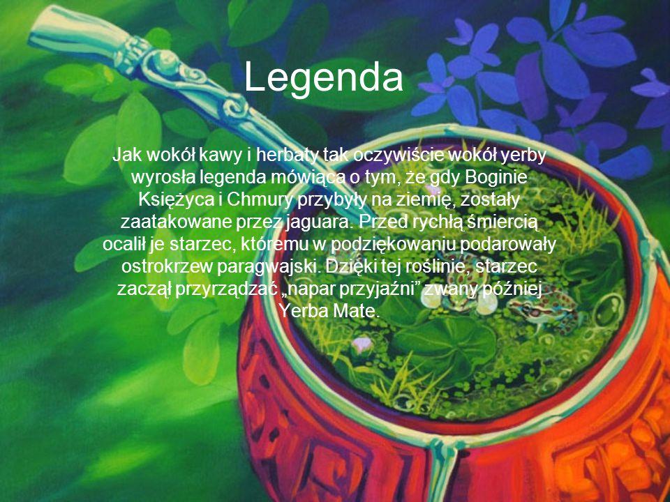 Legenda Jak wokół kawy i herbaty tak oczywiście wokół yerby wyrosła legenda mówiąca o tym, że gdy Boginie Księżyca i Chmury przybyły na ziemię, został