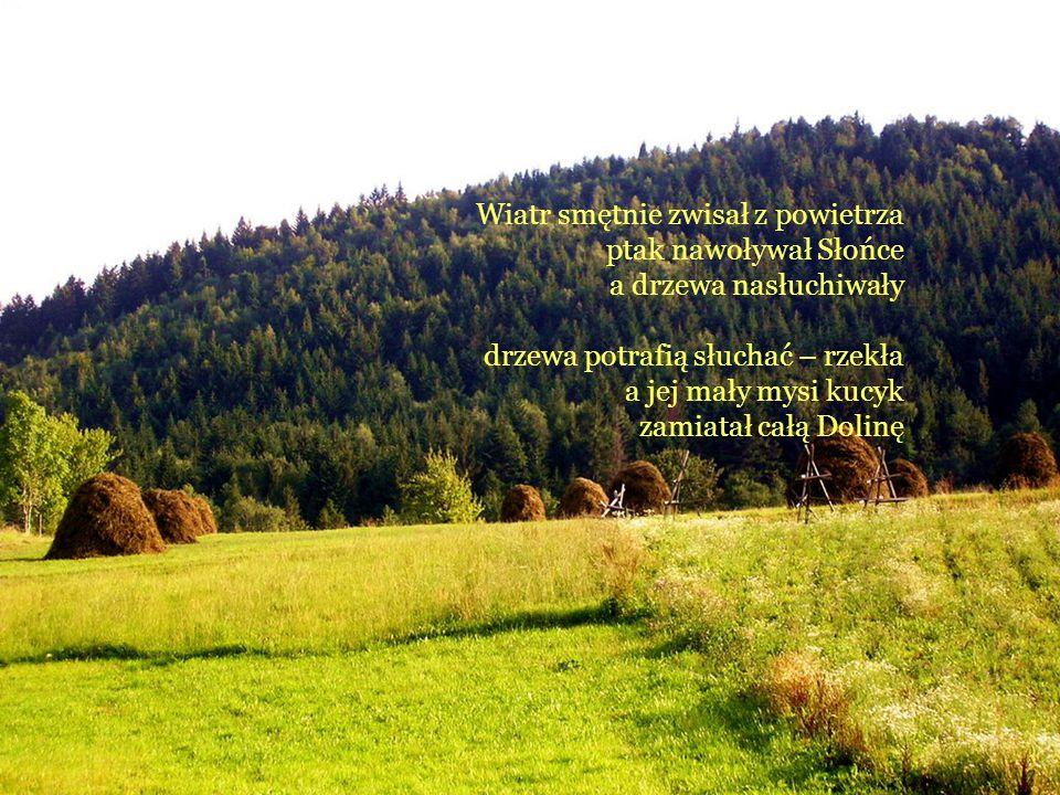 Wiatr smętnie zwisał z powietrza ptak nawoływał Słońce a drzewa nasłuchiwały drzewa potrafią słuchać – rzekła a jej mały mysi kucyk zamiatał całą Doli