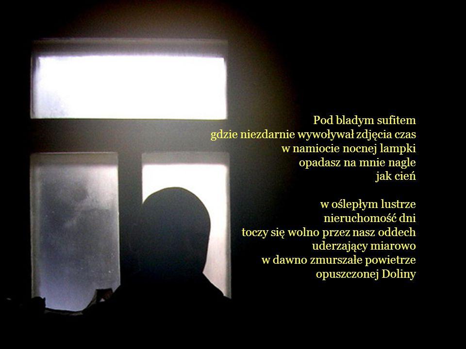 Pod bladym sufitem gdzie niezdarnie wywoływał zdjęcia czas w namiocie nocnej lampki opadasz na mnie nagle jak cień w oślepłym lustrze nieruchomość dni