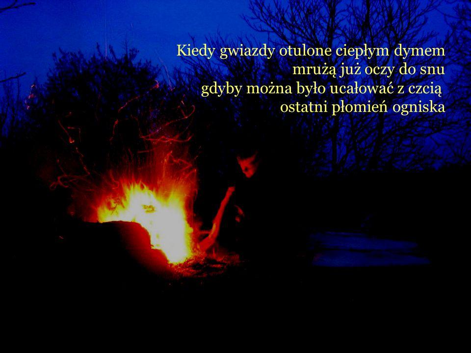 Kiedy gwiazdy otulone ciepłym dymem mrużą już oczy do snu gdyby można było ucałować z czcią ostatni płomień ogniska