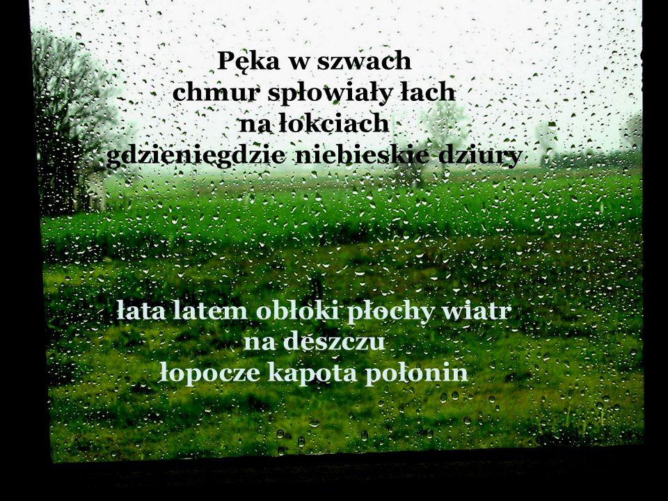Pęka w szwach chmur spłowiały łach na łokciach gdzieniegdzie niebieskie dziury łata latem obłoki płochy wiatr na deszczu łopocze kapota połonin