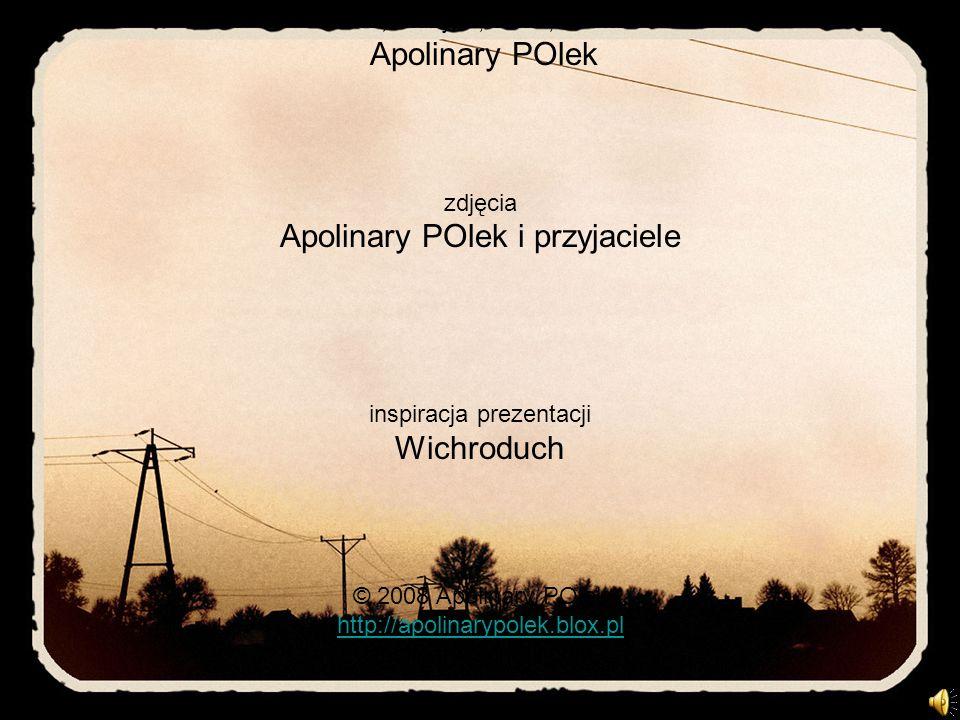 słowa, muzyka, układ, montaż Apolinary POlek zdjęcia Apolinary POlek i przyjaciele inspiracja prezentacji Wichroduch © 2008 Apolinary POlek http://apo
