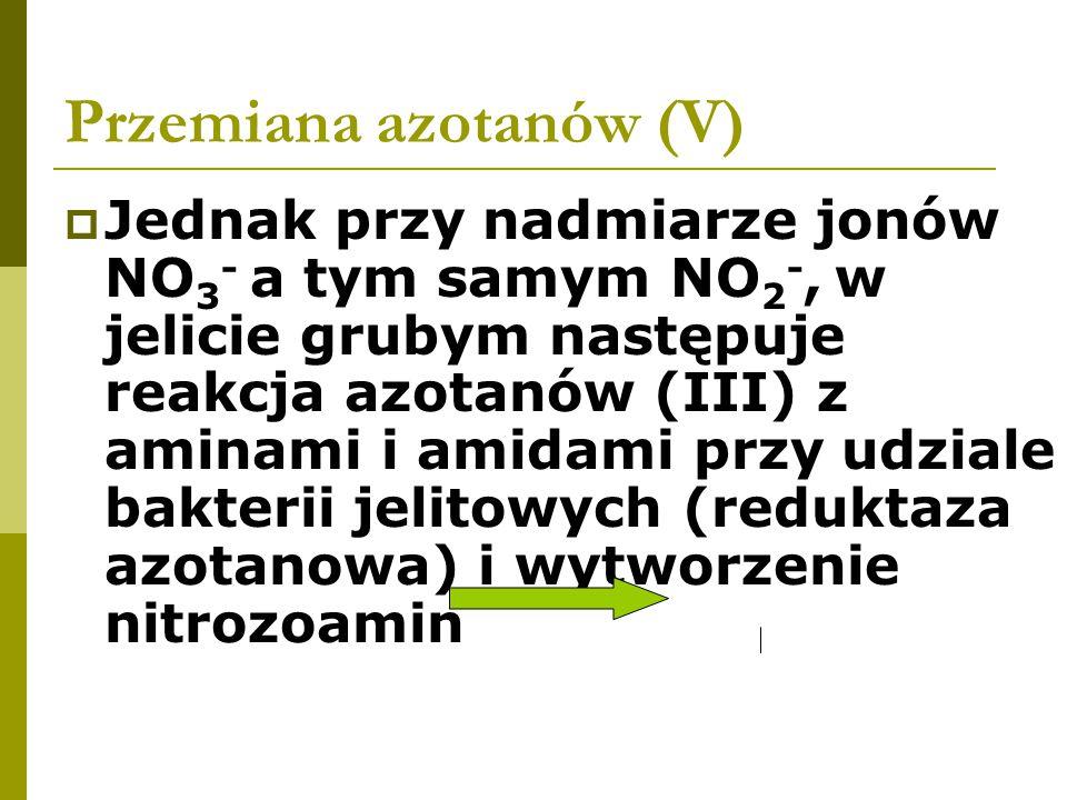 Przemiana azotanów (V)  Jednak przy nadmiarze jonów NO 3 - a tym samym NO 2 -, w jelicie grubym następuje reakcja azotanów (III) z aminami i amidami przy udziale bakterii jelitowych (reduktaza azotanowa) i wytworzenie nitrozoamin