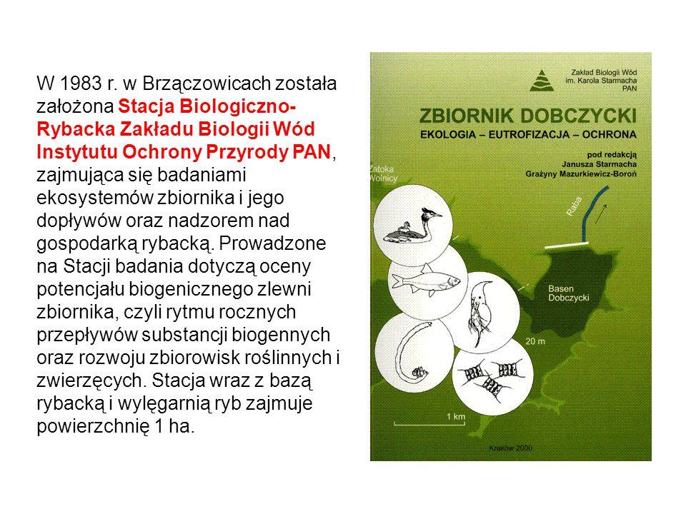 W 1983 r. w Brzączowicach została założona Stacja Biologiczno- Rybacka Zakładu Biologii Wód Instytutu Ochrony Przyrody PAN, zajmująca się badaniami ek