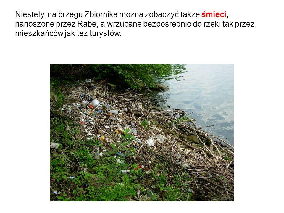 Niestety, na brzegu Zbiornika można zobaczyć także śmieci, nanoszone przez Rabę, a wrzucane bezpośrednio do rzeki tak przez mieszkańców jak też turyst