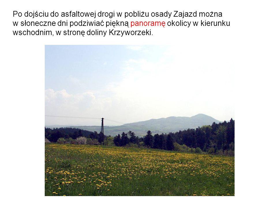 Po dojściu do asfaltowej drogi w pobliżu osady Zajazd można w słoneczne dni podziwiać piękną panoramę okolicy w kierunku wschodnim, w stronę doliny Kr