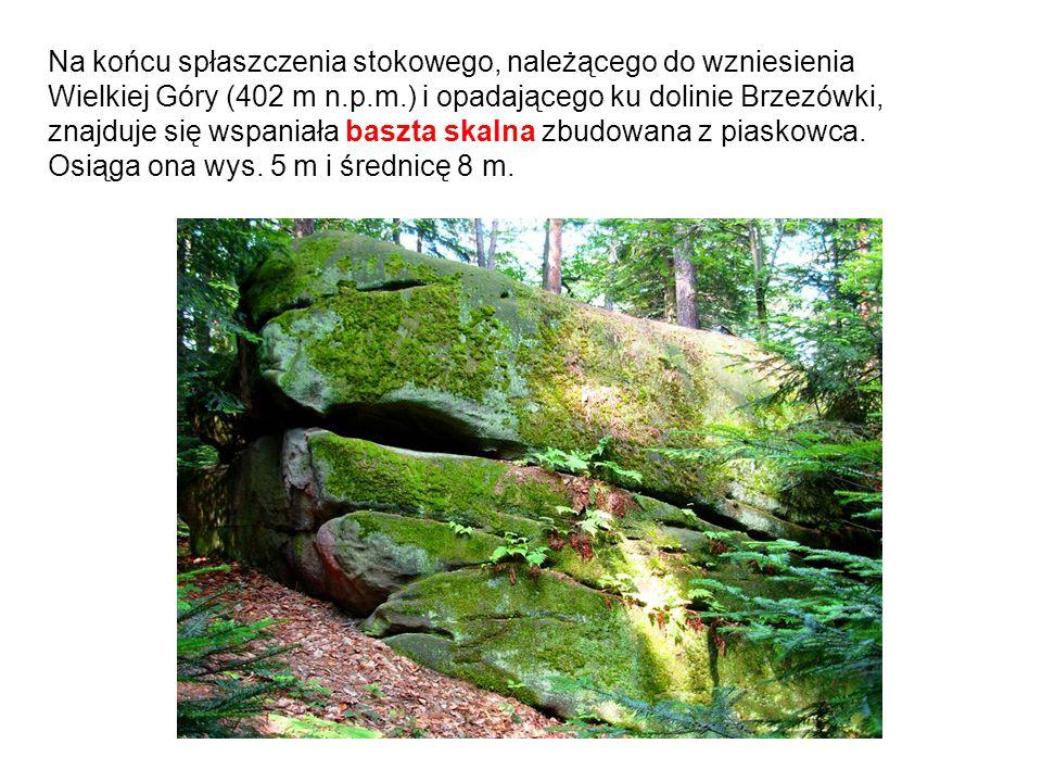 Na końcu spłaszczenia stokowego, należącego do wzniesienia Wielkiej Góry (402 m n.p.m.) i opadającego ku dolinie Brzezówki, znajduje się wspaniała bas