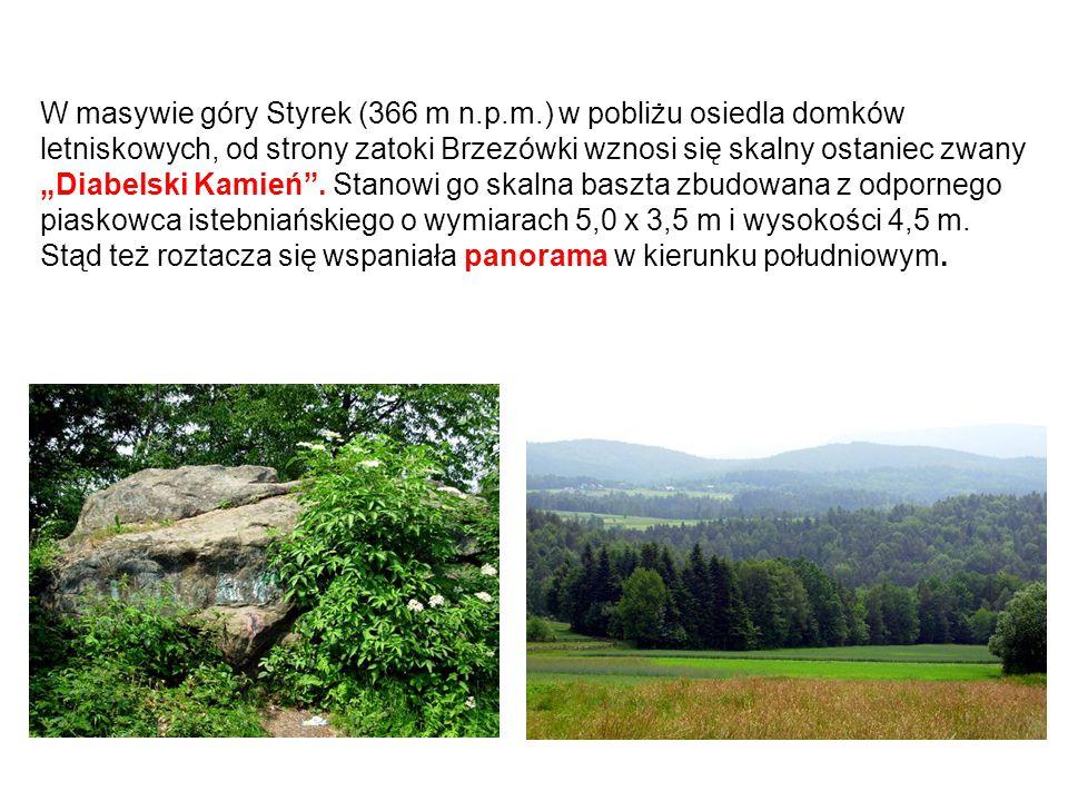"""W masywie góry Styrek (366 m n.p.m.) w pobliżu osiedla domków letniskowych, od strony zatoki Brzezówki wznosi się skalny ostaniec zwany """"Diabelski Kam"""
