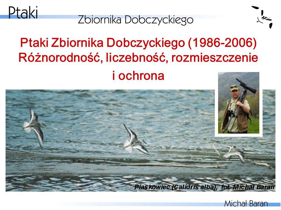 Przegląd rzędów cd.: Siewkowe Charadriiformes (46 gat.)