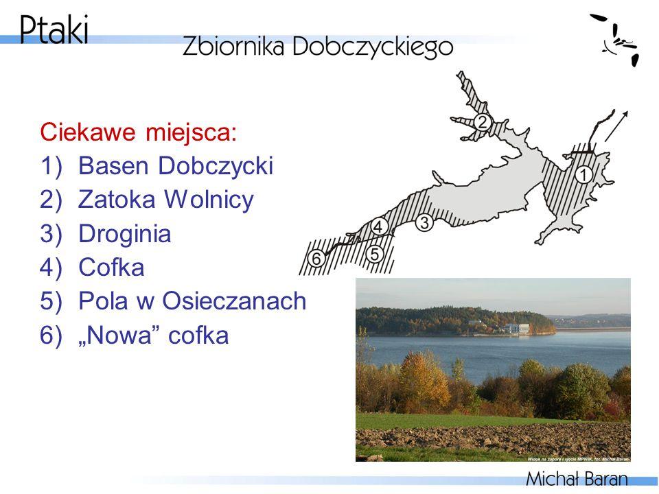 """Ciekawe miejsca: 1)Basen Dobczycki 2)Zatoka Wolnicy 3)Droginia 4)Cofka 5)Pola w Osieczanach 6)""""Nowa"""" cofka"""
