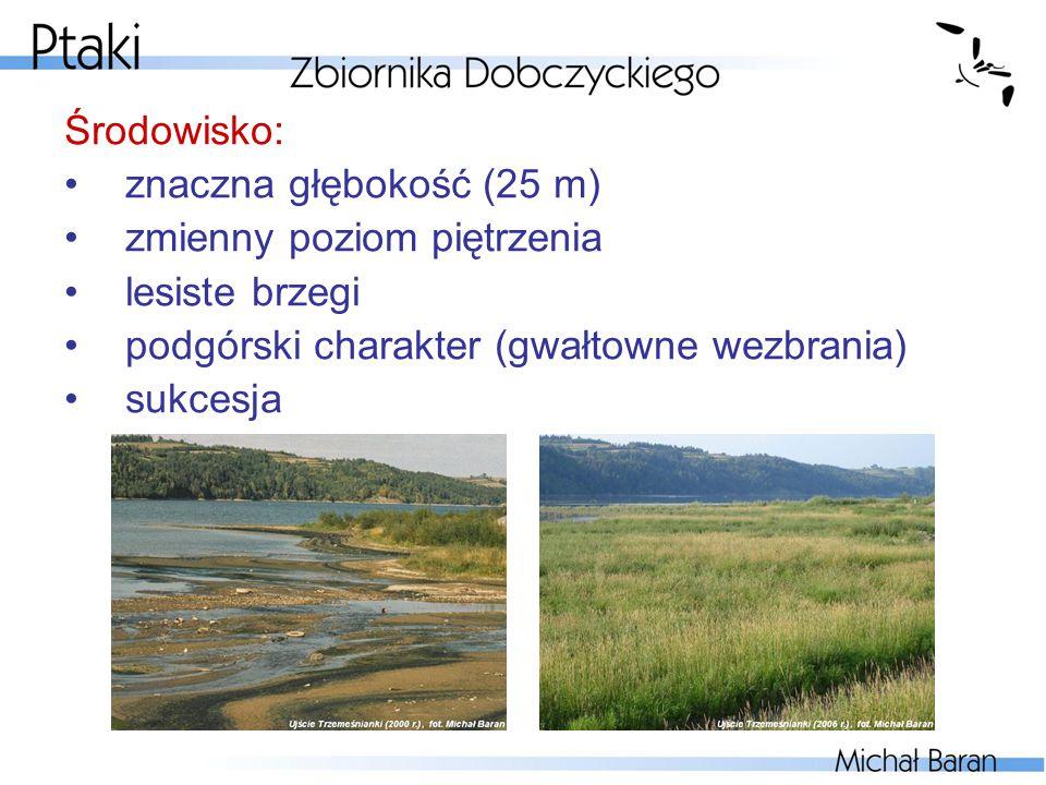Środowisko: znaczna głębokość (25 m) zmienny poziom piętrzenia lesiste brzegi podgórski charakter (gwałtowne wezbrania) sukcesja
