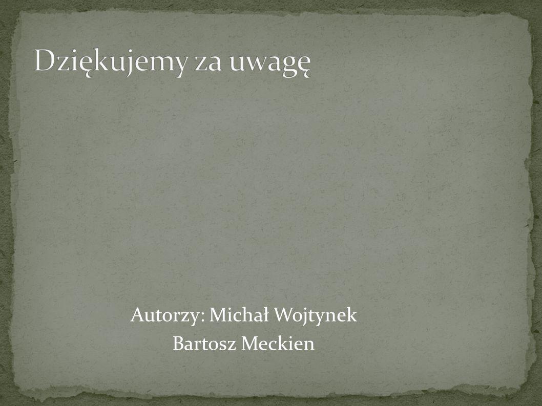 Autorzy: Michał Wojtynek Bartosz Meckien